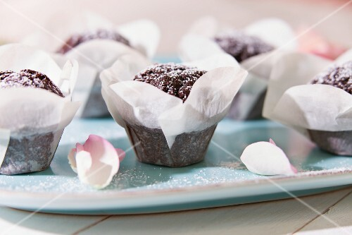 Chocolate muffins with icing sugar in paper cases