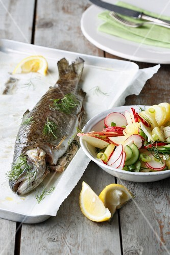 Oven-roasted trout with dill and an apple and radish salad