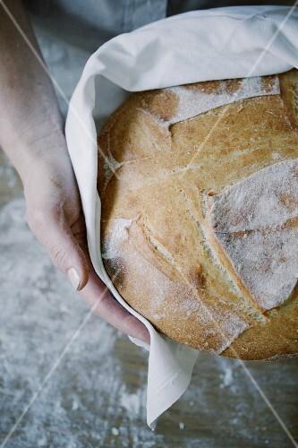 Hands holding a freshly baked loaf of bread