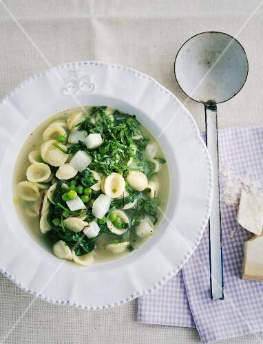 Minestrone with orecchiette pasta, peas and herbs