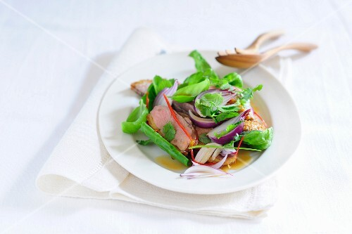 A duck breast salad with red onions