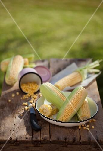 Corn on the cob and corn kernels
