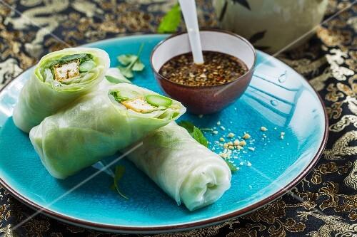 Vegane Reispapierrollen mit Tofu, grünem Spargel und frischen Kräutern