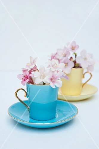 Purple and white flowers in colourful antique mocha cups with saucers