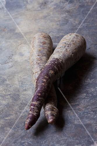 Two purple organic carrots