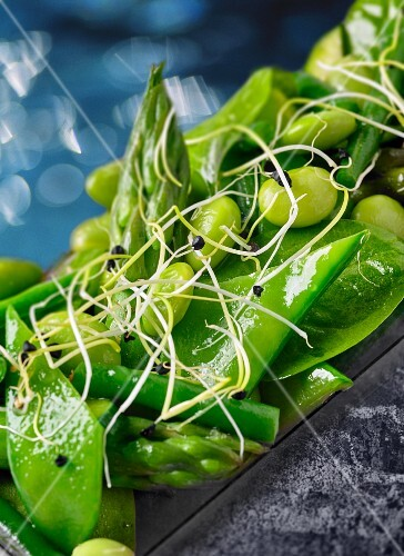 Green vegetable salad with asparagus, mange tout, beans and bean sprouts (close-up)
