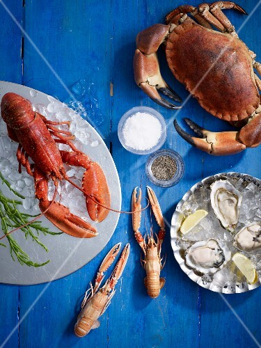 Lobster, crab, scampi and fresh oysters with salt and pepper