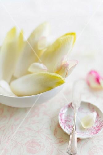 Chicory and edible petals
