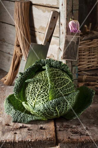 A rustic arrangement featuring a savoy cabbage