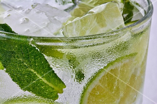 Fresh Mint in Mojito