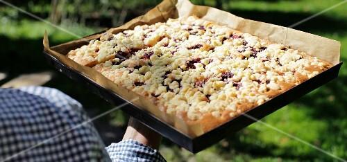 Tray bake cherry crumble cake