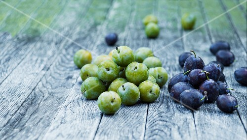 Greengages and damsons