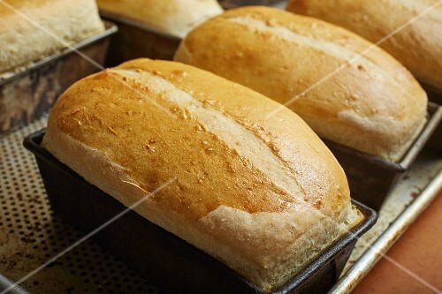 Salt bread (traditional bread from north-eastern USA)