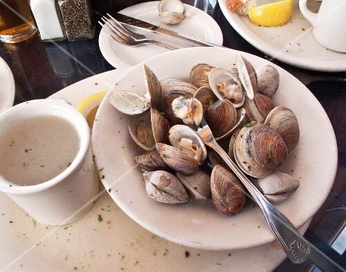Steamed littleneck clams
