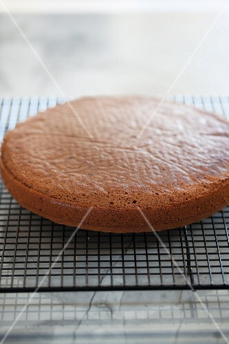 A freshly baked cake on a cooling rack