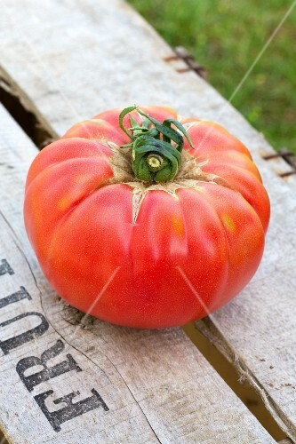 A red tomato on a wooden crate in a garden