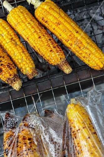 Grilled corn cobs at a market (Nong Khai, Thailand)