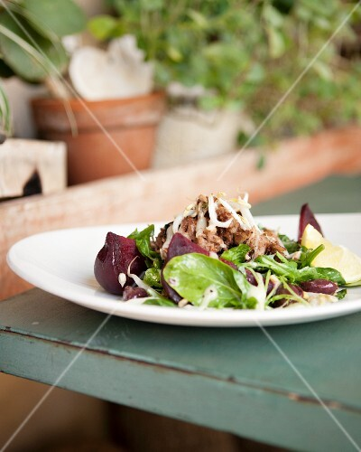 Salad with lamb, bean sprouts, spinach and rocket, Café Paradiso, Cape Town