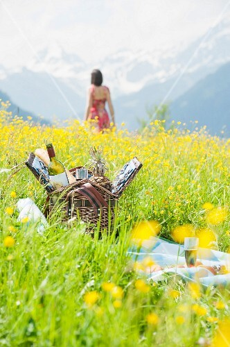 A picnic basket on alpine meadow