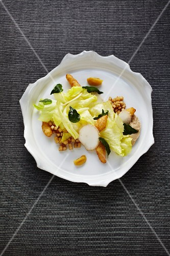 Chicory salad with sorrel root, king trumpet mushrooms and Persian limes at the restaurant 'Steirereck', Vienna