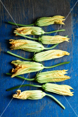 Courgette flowers on a blue wooden table