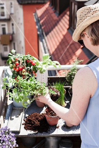 Woman planting up pots on potting bench on roof terrace