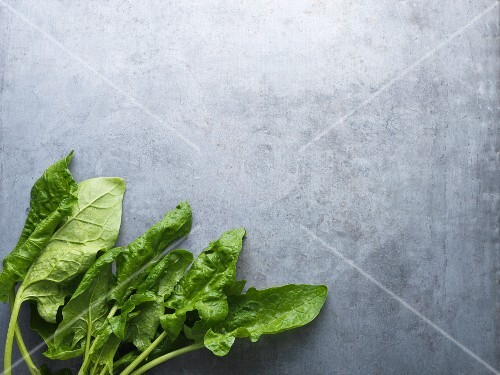 Fresh spinach leaves on a grey surface (seen from above)
