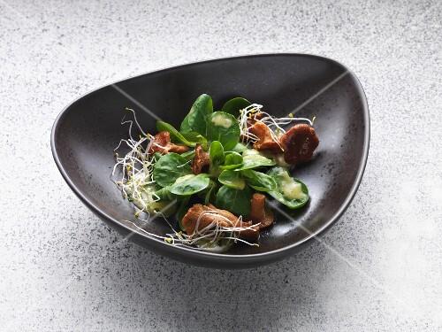 Fresh lamb's lettuce with fried chanterelle mushrooms and potato vinaigrette