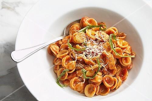 Orecchiette pasta with tomato sauce