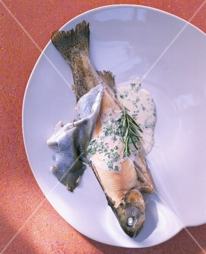Steamed brook trout with herb sauce