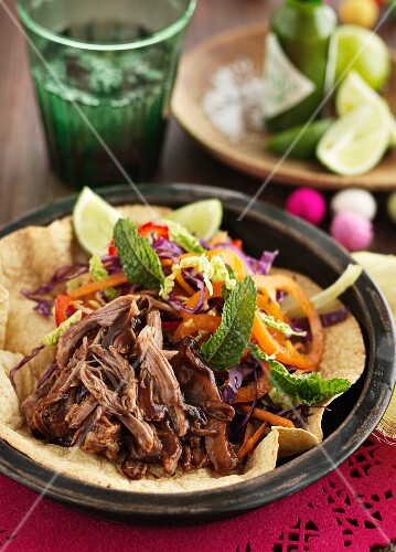 Tortilla with pulled pork and a vegetable salad