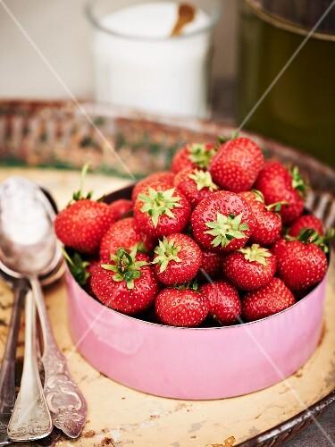 Fresh strawberries in an enamel pot