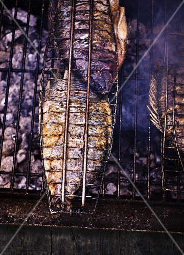 Grilled sea bream on a charcoal barbecue