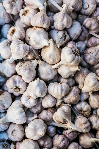 Garlic at Karmel Market, Tel Aviv
