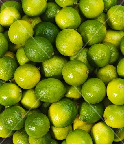 Limes seen from above