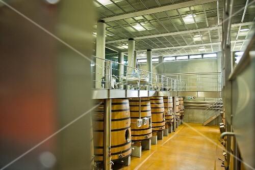 A fermentation cellar at the Chateau Faugeres vineyard (St-Emilion, Bordeaux, France)