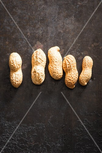 A row of five peanuts