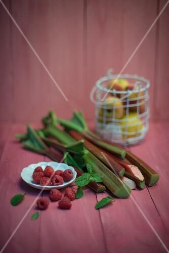 Raspberries, rhubarb, lemons, peaches and mint
