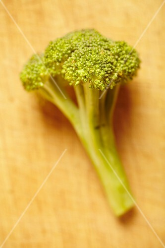 Fresh broccoli on a wooden board