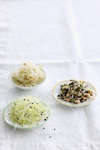 Various types of bean sprouts in small bowls