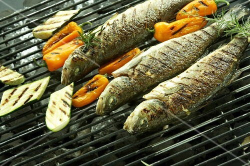 Grilled trout with vegetables on a barbecue