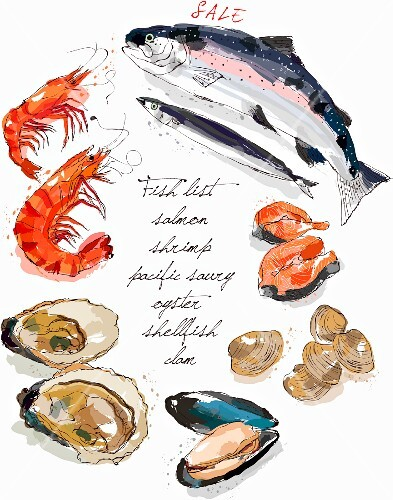 Fish and seafood (illustration)
