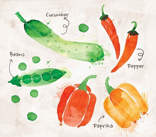 An arrangement of vegetables featuring cucumber, peas, peppers and peperoni (illustration)