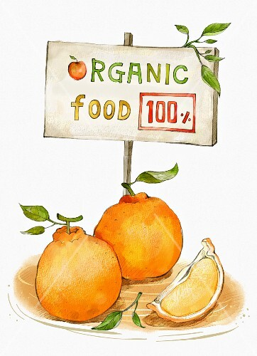 Oranges behind a sign with the words Organic Food (illustration)