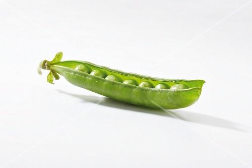 Pea pod, opened