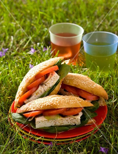 Sandwiches with sheep's cheese, spinach and tomatoes on a plate in a grass