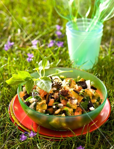 Aubergine salad with ginger and cumin in a bowl in the grass