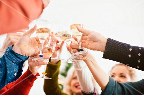 A family raising a toast with champagne glasses at a Christmas party
