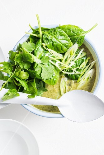Broccoli soup with spinach and coriander (Thailand)