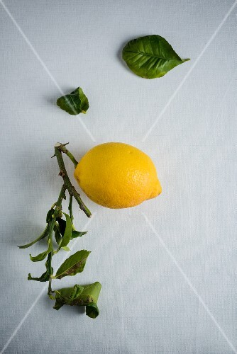 A lemon with leaves on a white surface